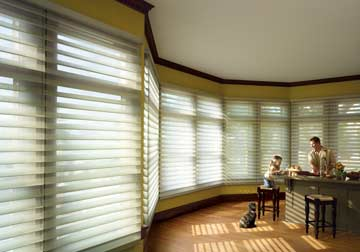 Hunter Douglas products allow you to deflect and redirect sunlight precisely in crystal lake and barrington, illinois by spiritcraft interior design