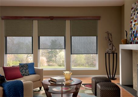 solar shades and window treatments for lavish interiors, home decor by Spiritcraft Interior Design in Crystal Lake, Illinois
